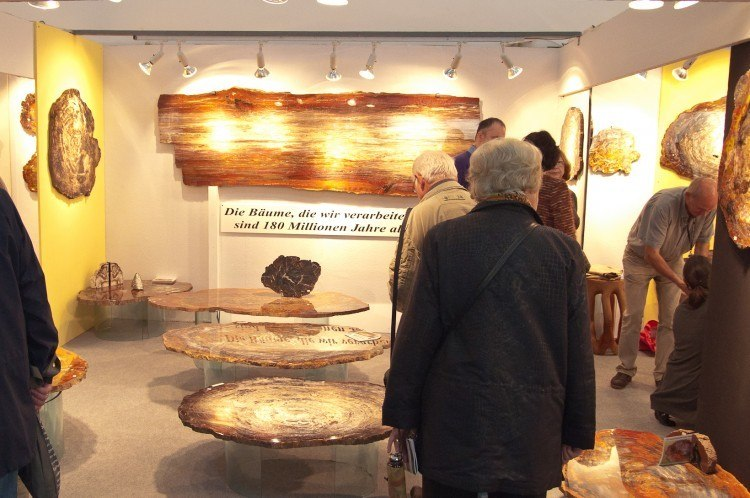 munich mineral show 2012 fossilized treetrunks