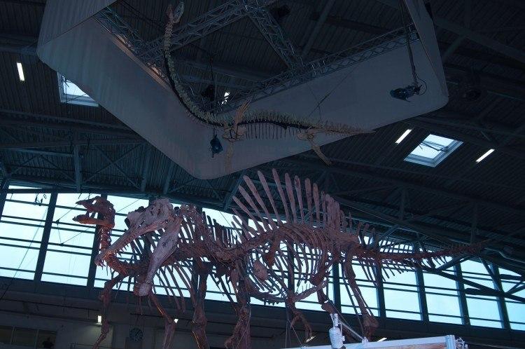 spinosaurus munich mineral show 2012